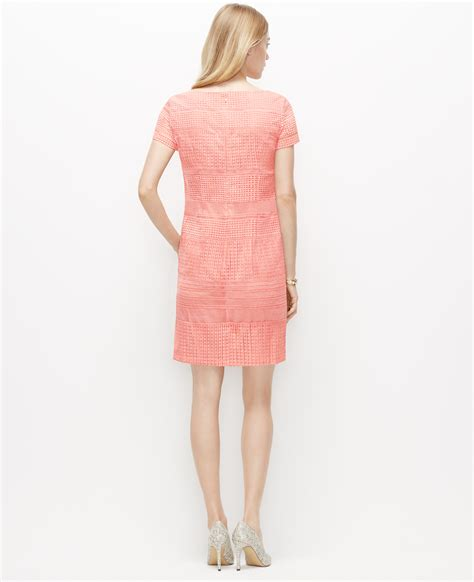 Pink Lace Dress 30580 organza lace shift dress in pink lyst