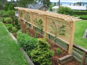 Trellis Design Plans by 25 Best Ideas About Grape Vine Trellis On Pinterest