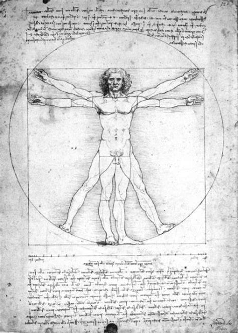 leonardo da vinci biography citation pep web vitruvian man c 1492 leonardo da vinci 1452