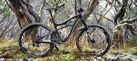 Review Mojo Cosmetics 3 by Ibis Mojo 3 Term Review Digital Hippie Stoked On