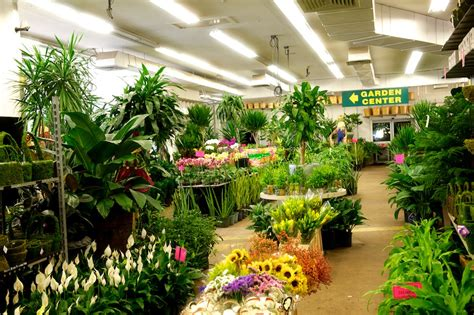 nj  nyc wholesale flowers  garden center