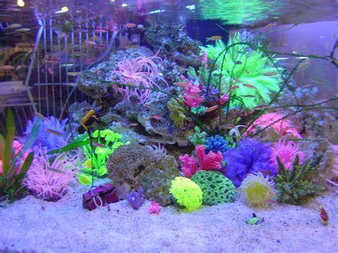 Neon Aquarium Decorations by Aquarium Neon Coral Reef Azoo Ornament Plant Flower Color