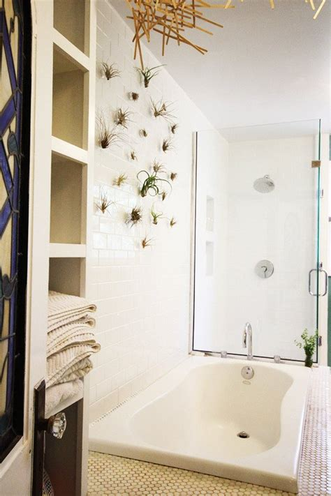 plants in the bathroom best plants that suit your bathroom fresh decor ideas