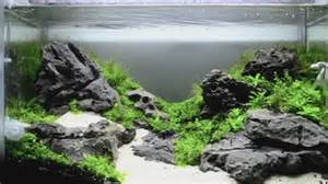 How To Make An Aquascape by Aquascape Sands Of Serenity How To Create Your Own