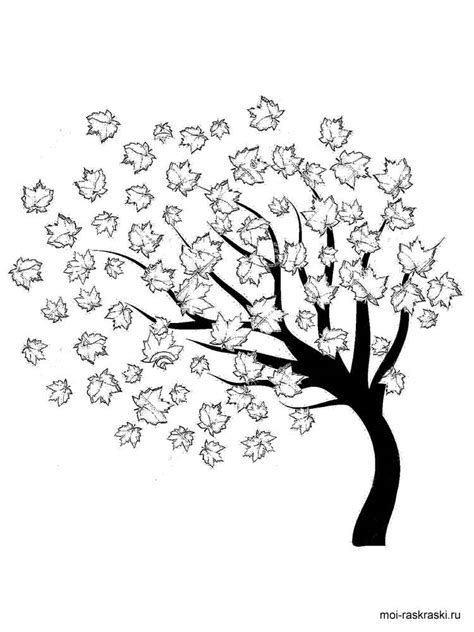 Maple Tree coloring pages for kids. Free Printable Maple