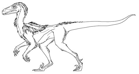 coloring page velociraptor drawn velociraptor coloring page pencil and in color
