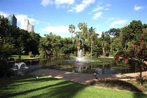 Botanical Gardens Brisbane City Botanic Gardens Are Brisbane S Original Gardens