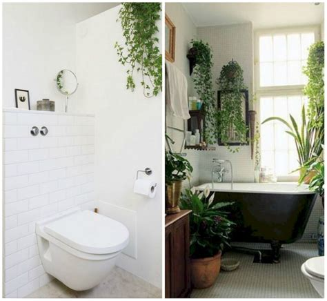 plants for bathrooms uk 24 most creative ideas to hack your bathroom beauty with
