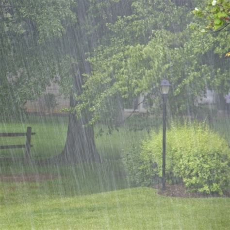 For A Rainy Day by Korean Word Of The Day Rainy Phrase