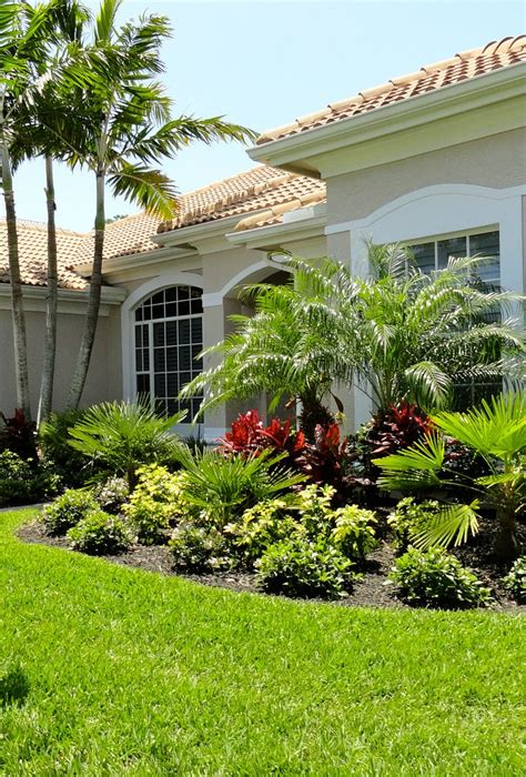 17 best images about landscaping with palm trees on pinterest small yards landscaping and
