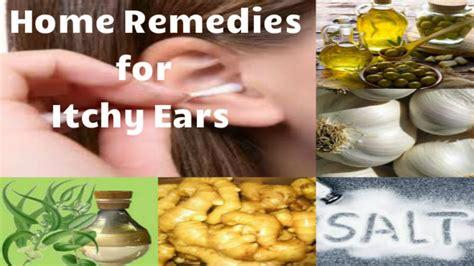 itchy ears home remedy home remedies for itchy ears kaan mai khujali ke upay