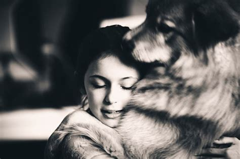 dogs and humans 26 dogs hugging their humans
