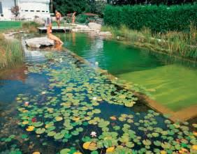 Natural Pool by The Natural Swimming Pool Elpasonovicegardener