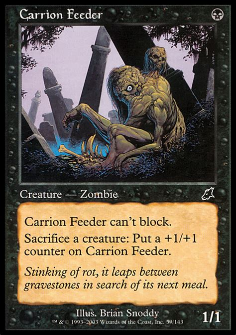 Carrion Feeder carrion feeder magic the gathering card info