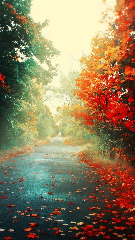 wallpaperwiki nature autumn  fall iphone pic