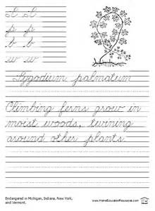 free printable cursive sentences worksheets poisonous