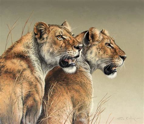 drawing and painting animals 178221321x quot abosisi quot