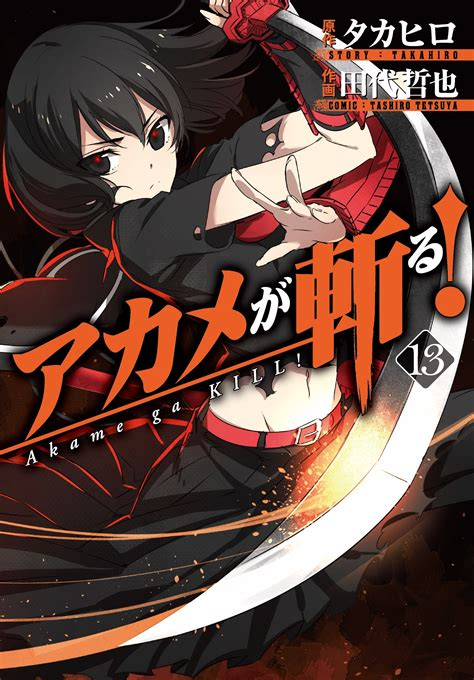 image akame ga kill vol 13 jpg animevice wiki fandom