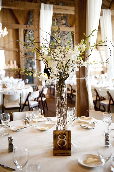 orchid and willow branch centerpieces wedding ideas