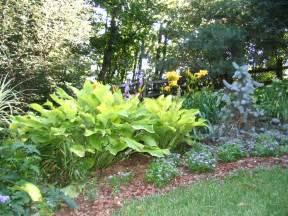 Perennial Garden Blank