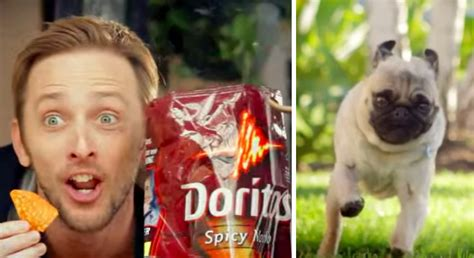 doritos commercial pug pug gives treat teasing human exactly what he deserves in doritos bowl