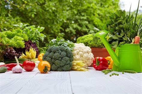 Vegetable Garden For Beginners Vegetable Gardening For Beginners The Complete Guide