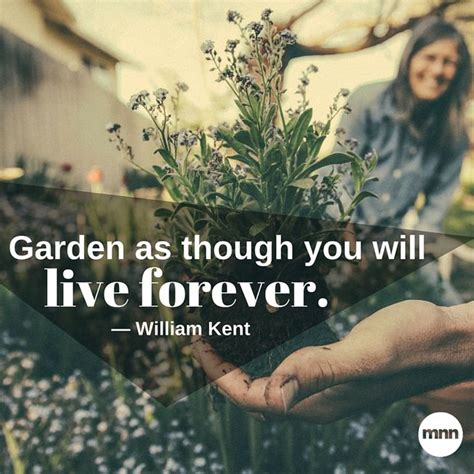 inspirational gardening quotes mnn mother nature