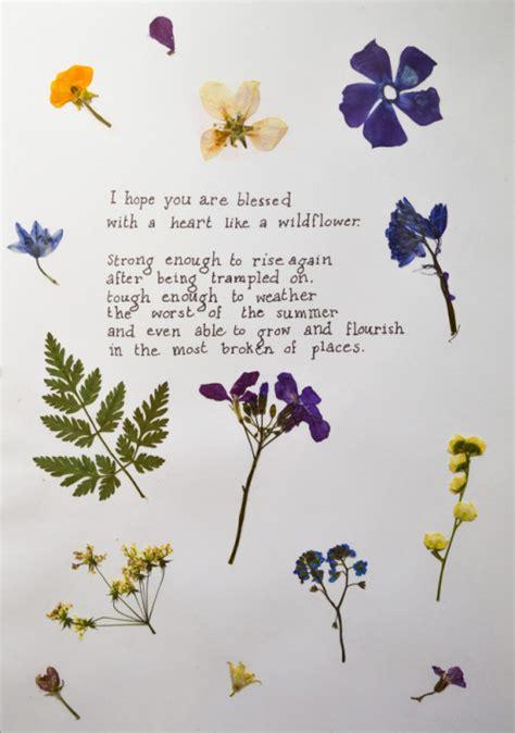 tumblr plant quotes