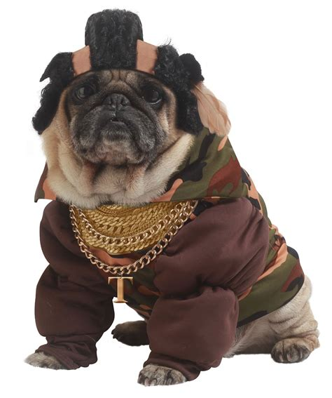 dogs in costumes look at new costumes costume craze