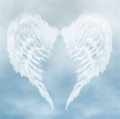 imagenes de alas blancas contact chenoah spirituele training coaching and healing