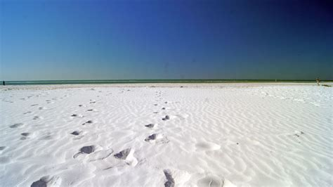 Florida Cool authentic tips for visiting siesta key authentic florida