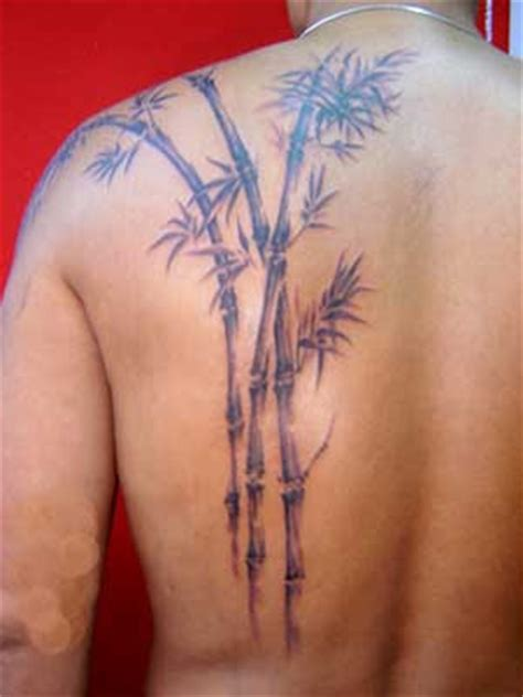 thai bamboo tattoo designs ideas designs photos bamboo letters designs