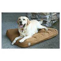 Carhartt Bed by Carhartt Brown Cotton Duck Padded Bed