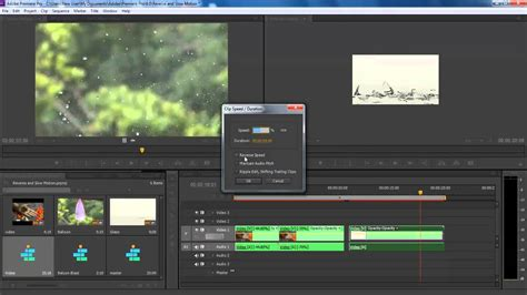 adobe premiere pro slow motion how to playback the video reverse and in slow motion in