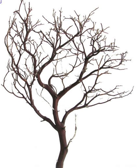 bare tree branch clip art