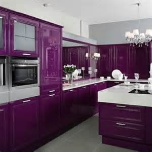 Purple Kitchen Cabinets Purple Kitchen Kitchens Cook In Custom Kitchens And The