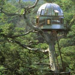 tree houses tree houses by pete nelson art and design