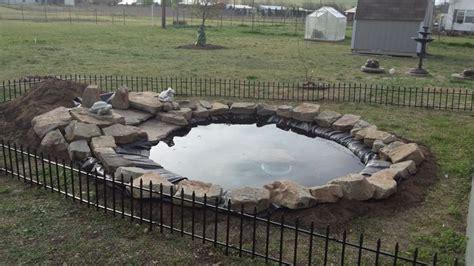 back yard turtle pond filled my diys pinterest