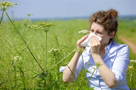 with allergies a month to month guide for your allergies huffpost