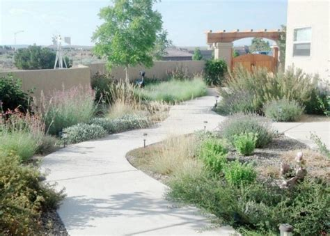 new mexico xeriscape transitional landscape