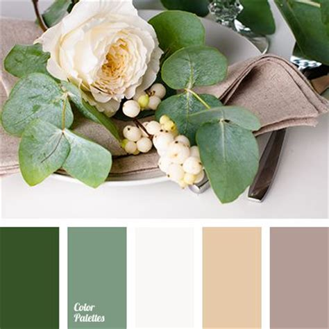 colors that go with green 17 best ideas about green color schemes on