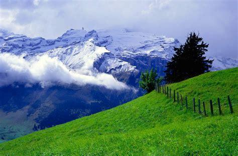 imagenes de paisajes hermosos grandes fondo pantalla paisaje bonito prado con monta 241 as