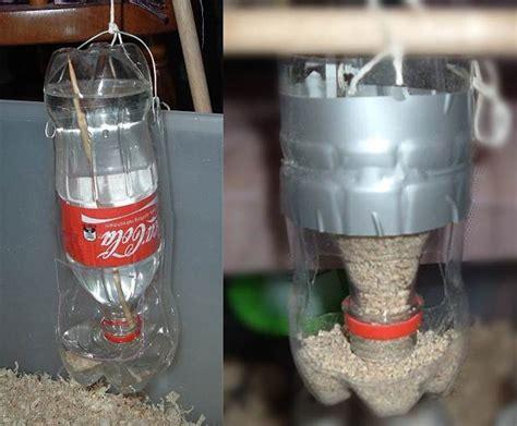 membuat tempat pakan dan minum alternatif di kandang