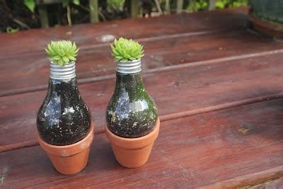 Light Bulb Planter Diy by Diy Light Bulb Planter The Idea King