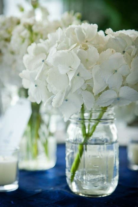 Simple Yet Beautiful Blooms by 20 Best Images About Flowers Decorations Cakes On