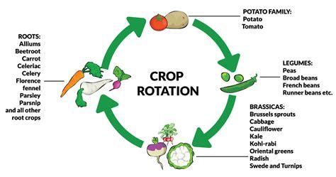 crop rotation bing images