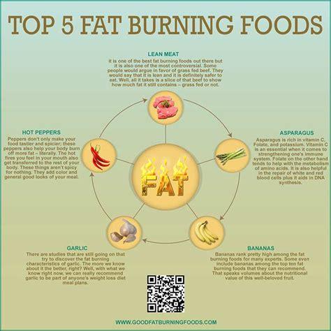 top 5 healthy fats top 5 burning foods
