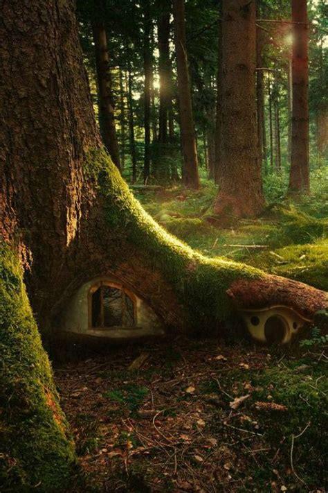 libro the faery forest an elf magic pixie garden fairy woods mysterious woodland wood tree house secret garden hidden