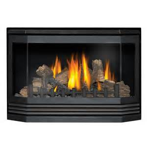 gas fireplace insert direct vent napoleon gdi 30n bay front direct vent gas fireplace