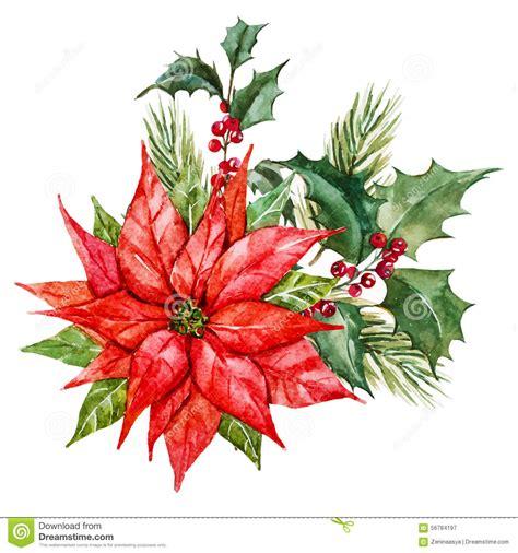 fiori di natale immagini fiori di natale dell acquerello illustrazione vettoriale